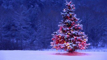 Рождественская ёлка для рабочего стола